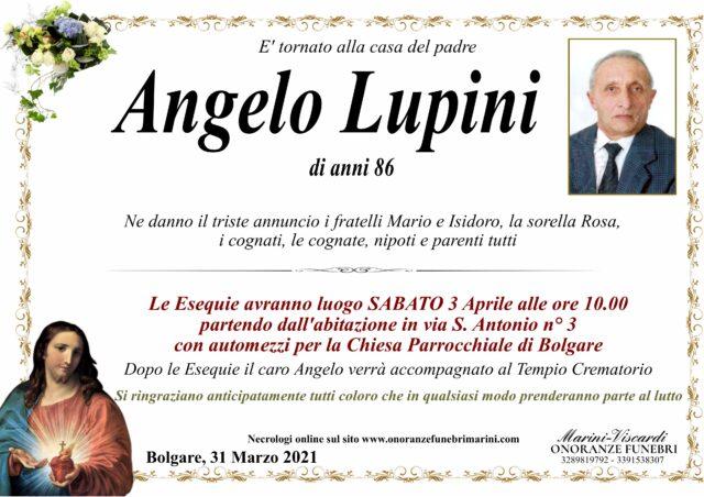 Angelo Lupini