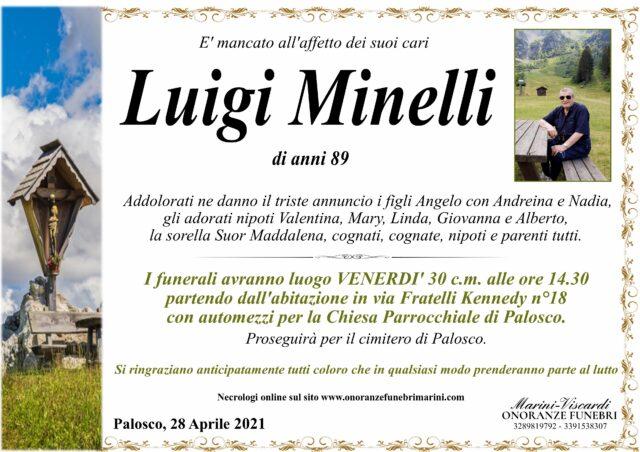 Luigi Minelli